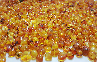 10 Grams Natural Baltic Amber Rounded Loose Beads With Holes Polished Cognac C