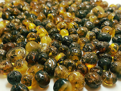10 Grams Natural Baltic Amber Rounded Loose Beads With Holes Polished Black Dirt