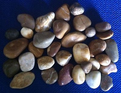 Small Collection of Decorative Brown River Pebbles & Stones