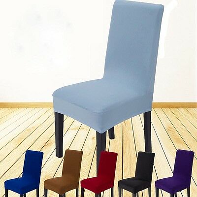 Solid Dining Chair Covers Chair Protector Slipcover Modish Decor Stretch Spandex