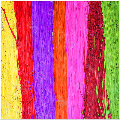 100g Natural Coloured Raffia Palm Fibres Leaves Ribbon Floral Crafts Supplies