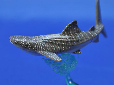 KITAN CLUB  NATURE TECHNI COLOR Ocean 1 Whaleshark Whale Shark mini figurine