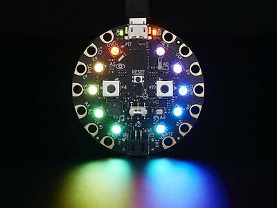Adafruit Circuit Playground - Developer Edition Educational Circuit Arduino G46