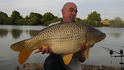 carp fishing holiday in france