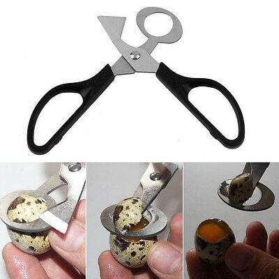 Quail Egg Scissors Cracker Opener Cigar Cutter Stainless Steel Blade Tool