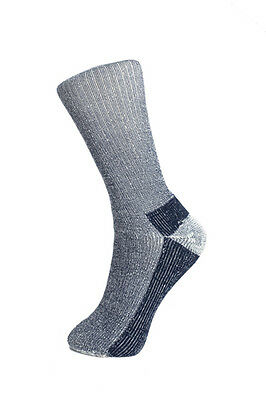3 pairs - walking sock - merino wool - Explorer- navy - ladies 4-7