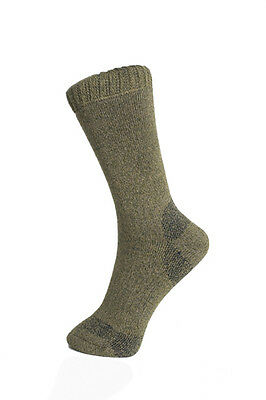 3 pairs - walking sock - merino wool Coolmax - trekker - green - ladies 4-7