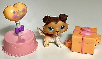 "✨Littlest Pet Shop✨ VERY RARE Collie #58 ""Sage"" Paw Down Variant & Accessories"