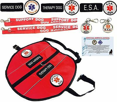 ALL ACCESS CANINE™ Service Dog ESA Dog Therapy Dog Vest Harness with Patches USA