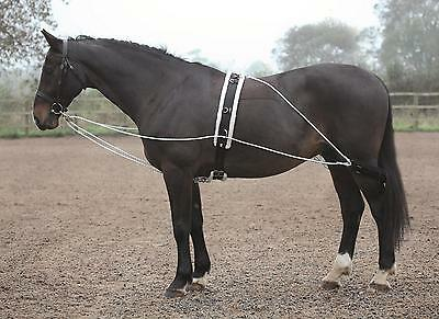 Shires Lunging Aid (Pessoa Style Training Aid)