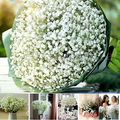 UK Gypsophila Paniculata Flor Artificial Decoración Amor Eterno Felicidad Feliz