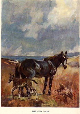 THE OLD MARE (and foal)  LIONEL EDWARDS signed in plate 1930 BOOK PLATE/ PRINT