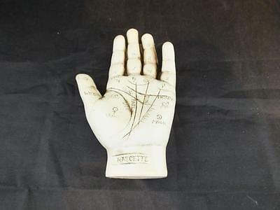 The Palmistry Hand Kit Resin Hand and Instruction Booklet.