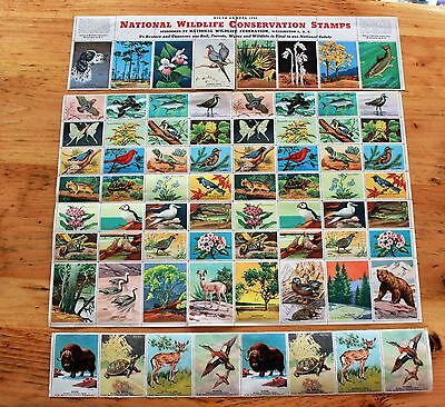 National Wildlife Federation Stamp Sheets Lot 1941 1946