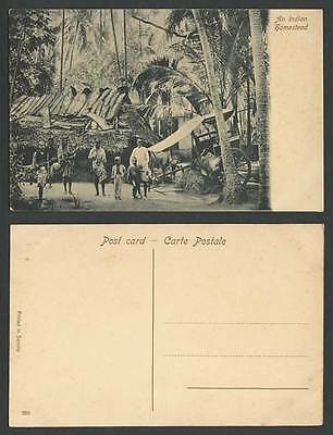 India Old Postcard An Indian Homestead, Bombay, Native House Cattle Bullock Cart