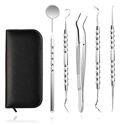 NEW Dental Oral Hygiene Kit 5 Tools Deep Cleaning Professional Scaler Teeth care
