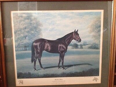 Seattle Slew by Richard Stone Reeves very rare