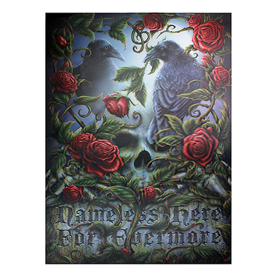 Sorrow for the Lost - 3d Picture - Raven skull - Gothic - Wiccan