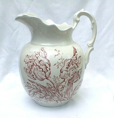 Vintage Thompson Ohio Sydney Brown Transferware Pitcher Early 1900s