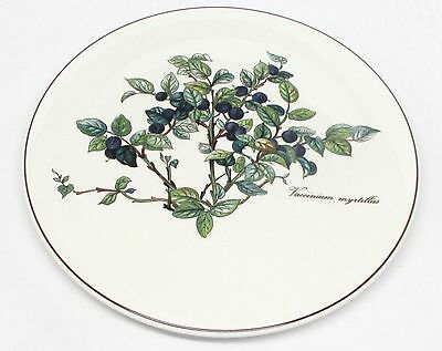 "Villeroy & Boch - Botanica - 8"" Blueberry Tea Tile - 2nd Quality"
