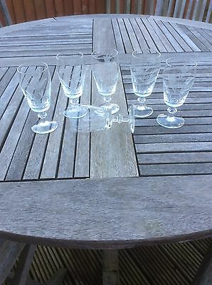 6 matching etched vintage glasses