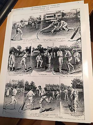 1907 Shakespeare on cricket by ST Dadd illustrated sporting & dramatic news vgc