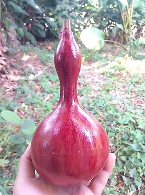 8 inch tall Dried Bottle Gourd for crafts beautyful paint gift hanging