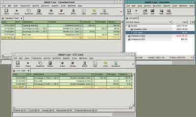 Personal and Business Accounting Software - for Microsoft Windows
