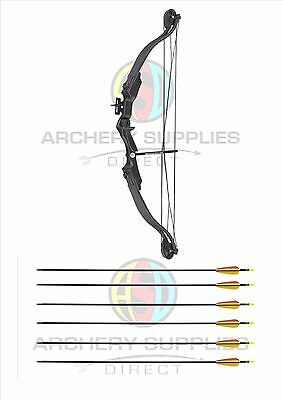 ASD Typhoon Archery Youth Black Compound Bow With 8 Arrows + Accessories