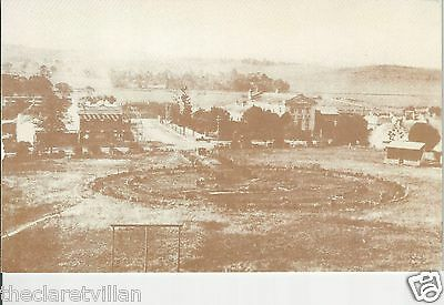 THe Green - later Mawson Park c.1925 Campbelltown NSW Reproduction Postcard