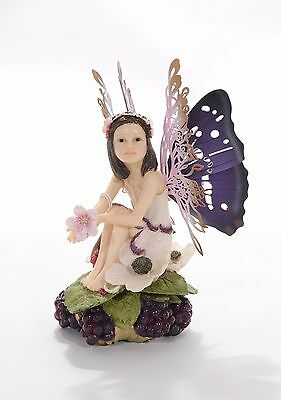 The fairy Way*The Bramble's Keepsake Box*no:34022-rare