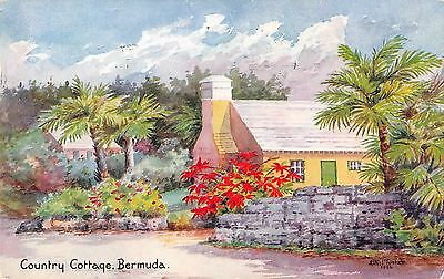 Bermuda birds eye view showing a typical country cottage antique pc (Z31084)