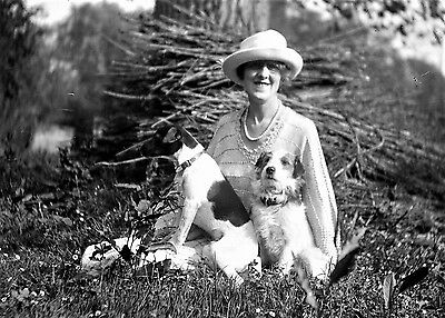 PHOTOGRAPHIC GLASS NEGATIVE LADY WITH TWO PET DOGS c1920 NICE IMAGE