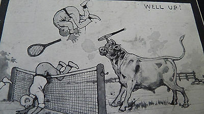 Old Postcard Comic Tennis Players & Bull Well Up Yes Or No Series