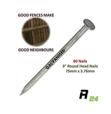 "60 Galvanised Round head Nails (75x3.76mm) 3"" Perfect for Fence & Fence repair"
