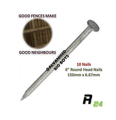 "10 Galvanised Round head Nails (150x6.67mm) 6"" Perfect for Fence & Fence repair"