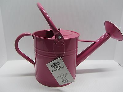Ground Works Powder Coated Pink Decorative Watering Can Flower Pot
