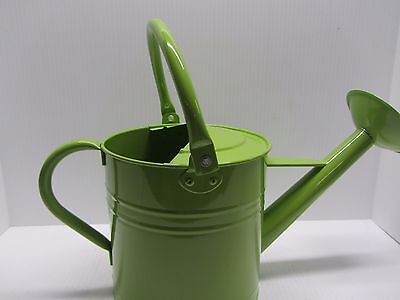 Ground Works Powder Coated Green Decorative Watering Can Flower Pot