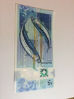 Royal Bank of Scotland New Polymer £5 ZZ Replacement Uncirculated Scarce