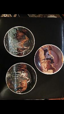 Horse Chris Cummings Cypress Home Collectable Plates