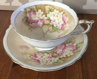 Paragon Vintage Cabinet China Tea Cup And Saucer