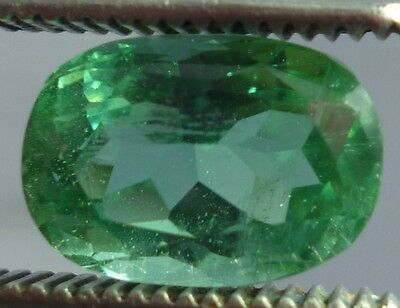Wow vvs 5.6 cts Green Kunzite oval cut Piece for  A++ with 13x9x8 mm