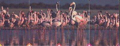 South Africa MTN Phonecards - FLAMINGO PUZZLE - SET OF 4