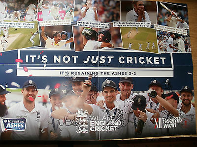 Signed Ashes 2013 Poster