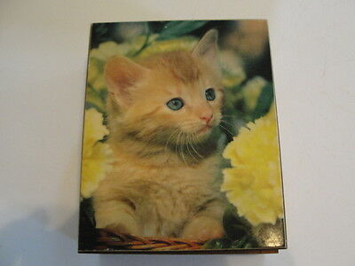 Wooden Trinket Box With Kitten On It