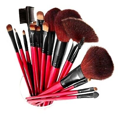 SHANY Professional 12 - Piece Natural Goat/Badger Cosmetic Brush Set, Pouch