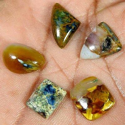 19.25Cts.100% NATURAL GOLDEN PIETERSITE MIX CABOCHON MATCHED LOT LOOSE GEMSTONES