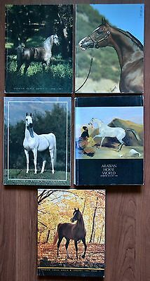 Lot of 5 ~ 1987 Arabian Horse World Magazines~ 1982 national champions