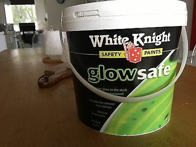 Glow In The Dark Paint 4L