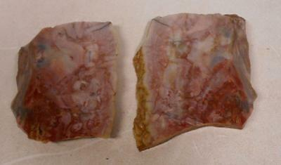 Morrisonite 2 Matching Slabs for Cabochons or Display 5.4 Oz 5091